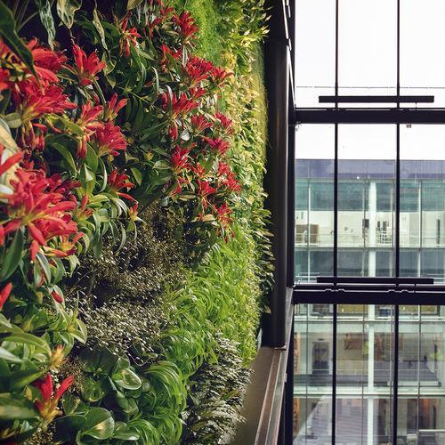 vertical garden with live plants - GREENWORKS SWEDEN