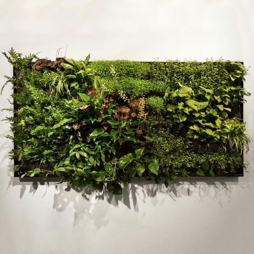 natural living frame / indoor