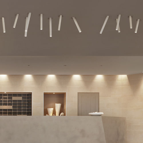 recessed ceiling light fixture / surface-mounted / LED / composite