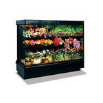 refrigerated display case with shelves / for shops