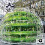commercial greenhouse / botanical / gardening / single-span