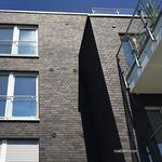 Facing brick / solid / for facades / gray BRISBANE Röben
