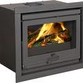 wood-burning fireplace insert - 2020S