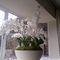 fiberglass planter / round / contemporary / traditional