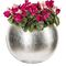 synthetic ornamental-plant / small plants