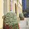 galvanized steel planter / contemporary / for public spaces