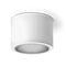 surface mounted downlight / LED / round / tubular