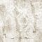 Vintage wallpaper / nonwoven fabric / vinyl / patterned HD-619A - RIPPED DAMASK HD WALLS