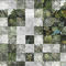contemporary wallpaper / fabric / vinyl / nature pattern