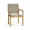 Traditional chair / with armrests / Batyline® / walnut SIENA  MANUTTI