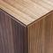 low filing cabinet / wood veneer / with hinged door / contemporary