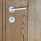 entry door / swing / oak / security