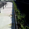 Aluminum planter / rectangular / custom / contemporary STEELAB  ATELIER SO GREEN