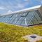 extensive green roof / flat