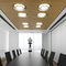 interior acoustic panel / for ceilings / for false ceilings / for panels