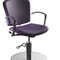 synthetic leather makeup chair / with headrest / with footrest / with reclining back