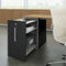 low filing cabinet / contemporary