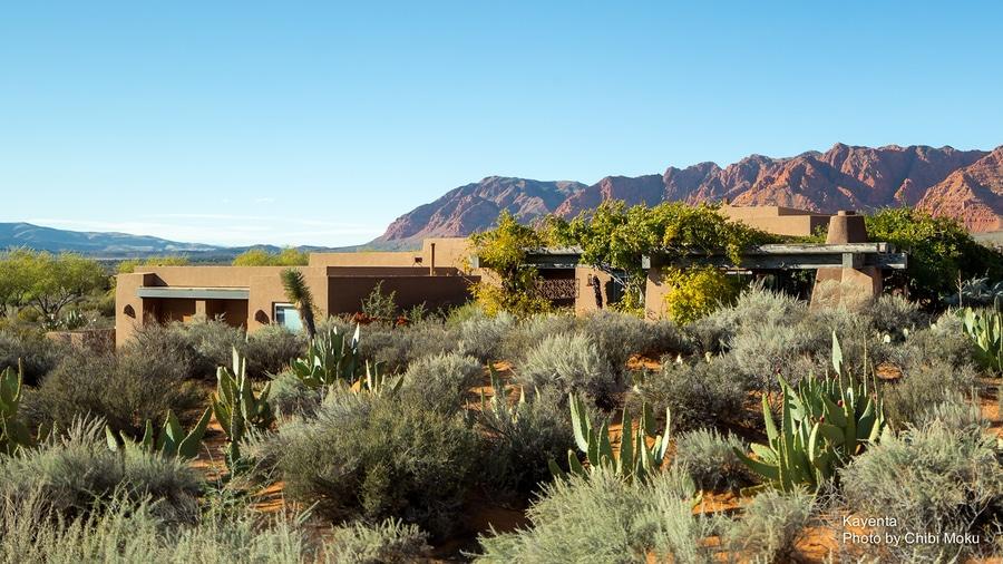 A unique community of modern green homes hug the desert floor in
