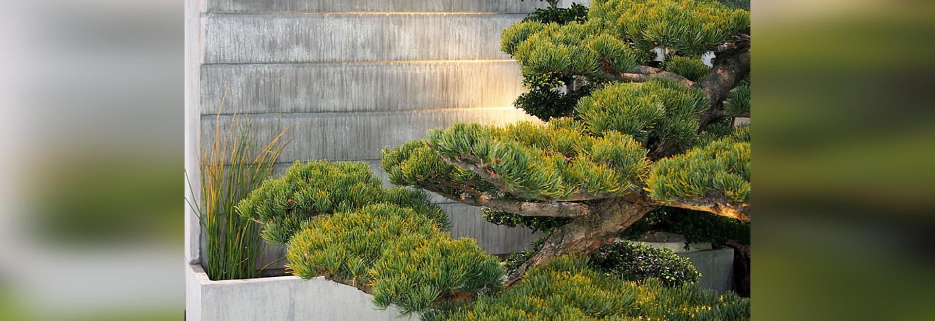 fountain water wall titan zinc
