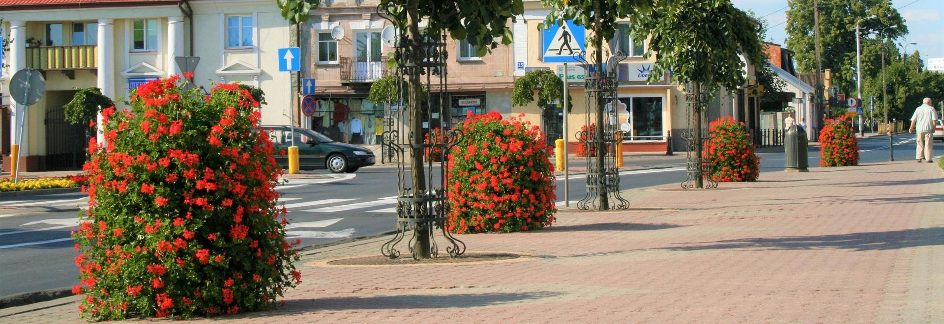 Gostynin, Poland