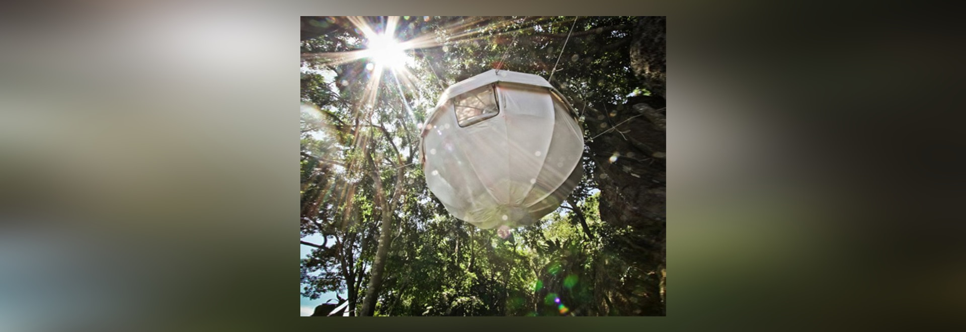 Cocoon Tree cocoon tree: a lightweight, spherical treehouse for sustainable