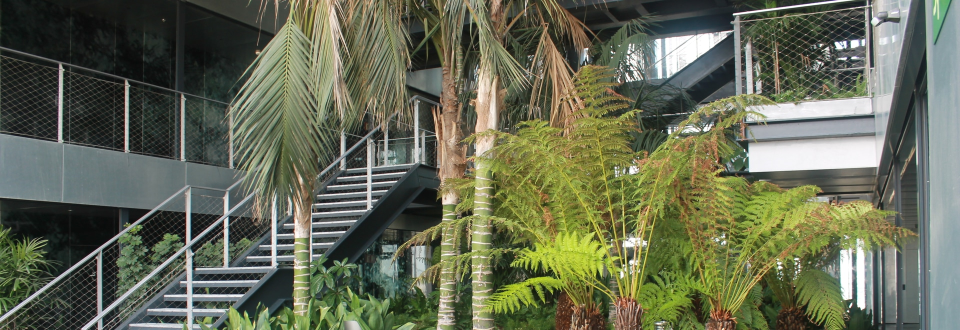 The open vertical garden with its 300 palm trees and other tropical plants