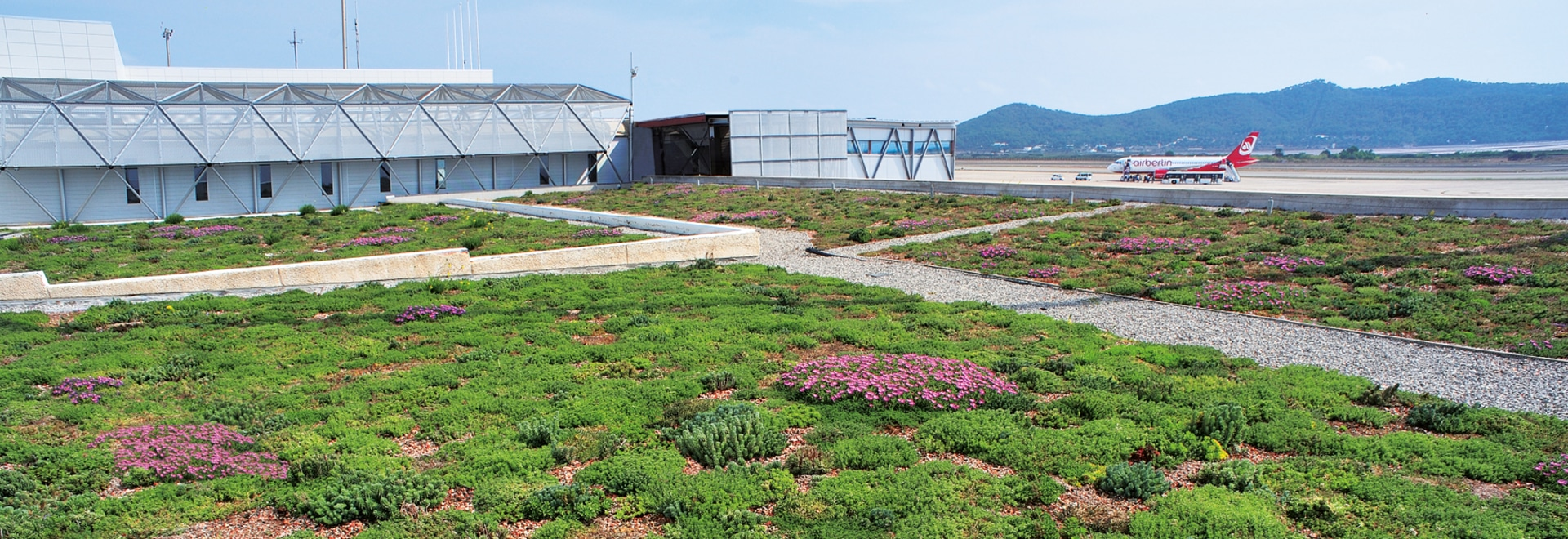 Particularly suitable for expansive green roof areas: