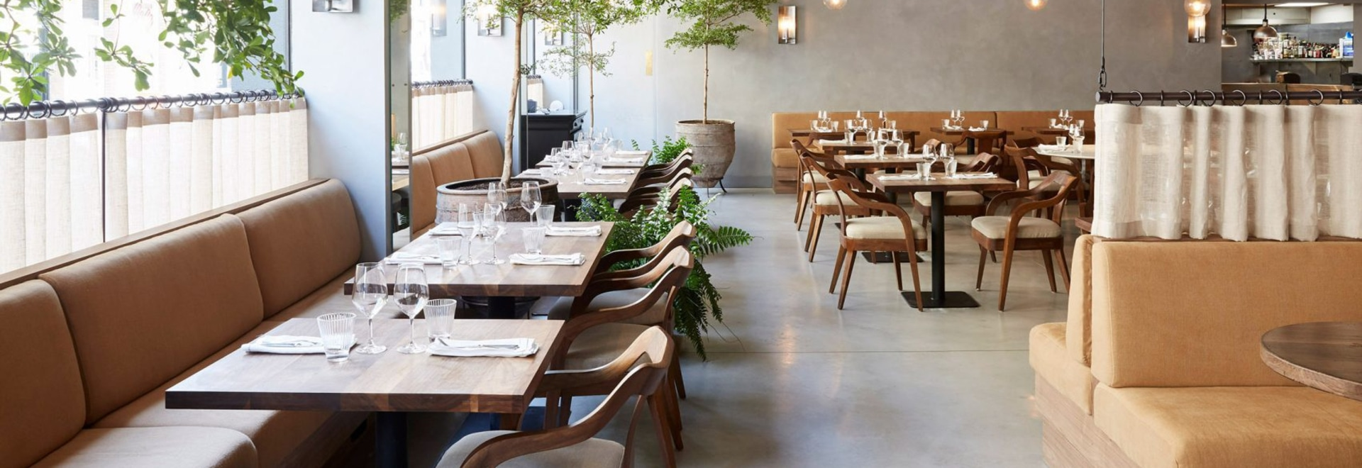 Timber furnishings and open-fire cooking warm up concrete interiors of St Leonards restaurant
