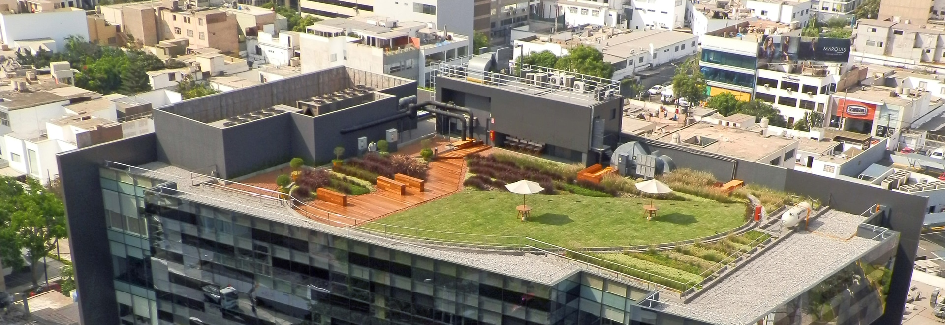What exactly will a green roof achieve in the future?