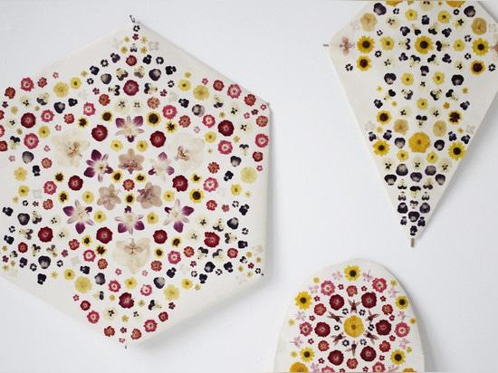 Kites by Fredericks & Mae