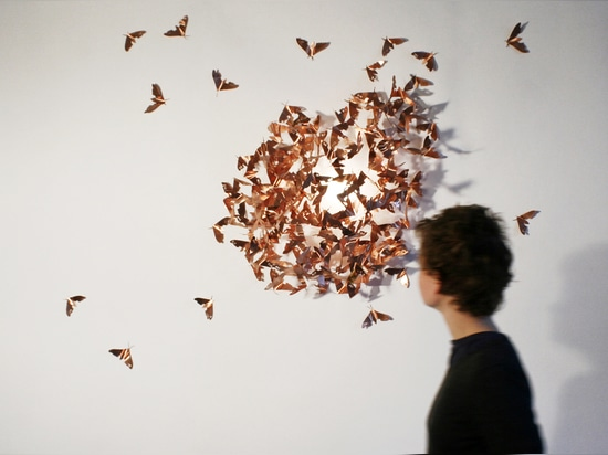 Limited Moths, Image © Mischer'Traxler