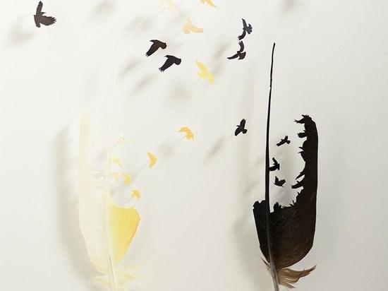 FEATHERFOLIO BY CHRIS MAYNARD