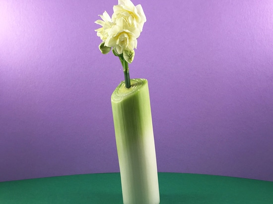 a single white bud is displayed in a leek vase