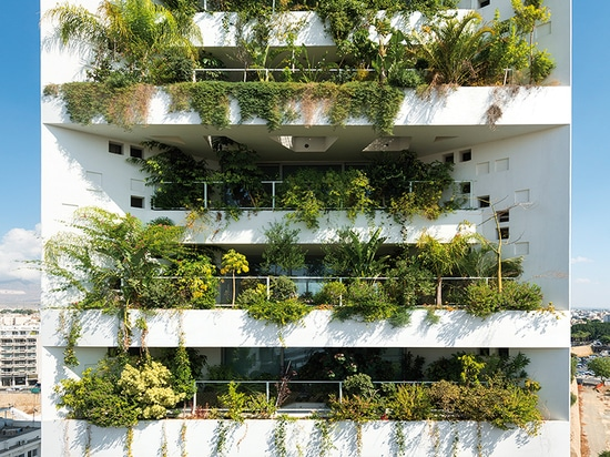 a vertical landscape covers approximately 80% of the building's southern façade