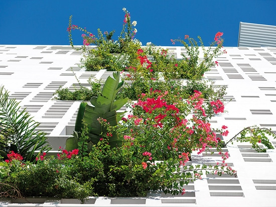 the living façade supports a variety of local plants