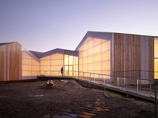 The Exhibition Centre and Insect Museum comprises five house-shaped structures, which intersect at unlikely angles