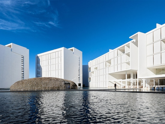 Mar Adentro Hotel and Residences, San José del Cabo, Mexico