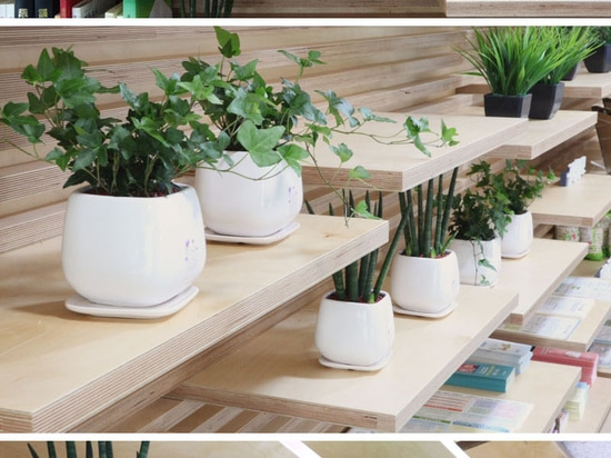 Shelving Idea – This Wood Slot Wall Can Reposition Shelves Anywhere