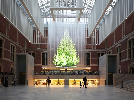 Best of #Christmas trees
