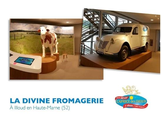 Divine Fromagerie BONGRAIN a Illoud France