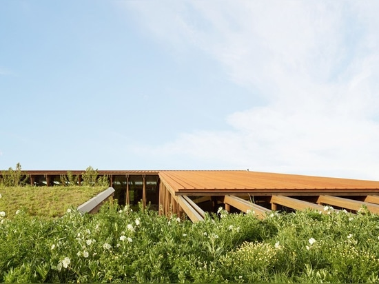 graham baba architects conceive an exposed structure for washington fruit & produce co.