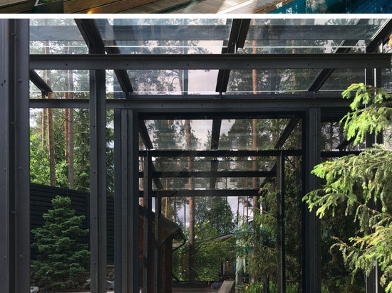 This Private Gym Is Surrounded By A Forest