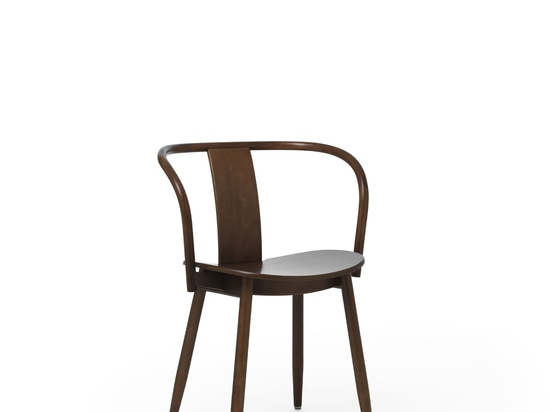 Icha Chair Walnut Stained Beech