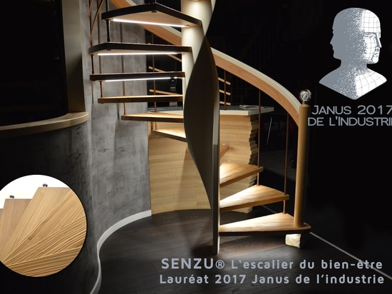 The staircase Senzu by Treppenmeister has just been crowned by the price Janus de l'Industrie