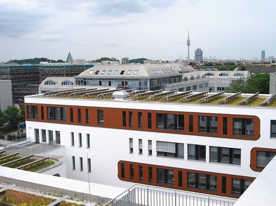 Extensive green roof combined with solar energy