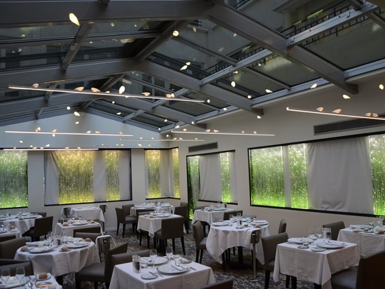 What if we had dinner in a giant aviary ...