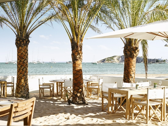 Vineyard – TUUCI Collection at the Luxurious Nobu Hotel Ibiza Bay