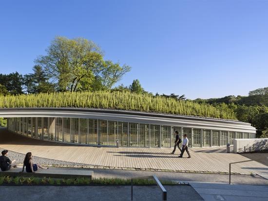 Upper Level Garden Pathway