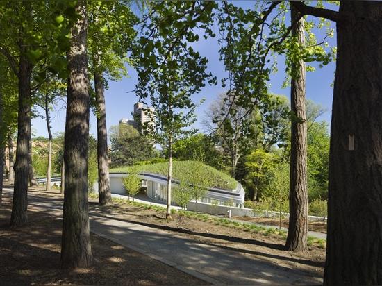 Garden View from Ginkgo Allee