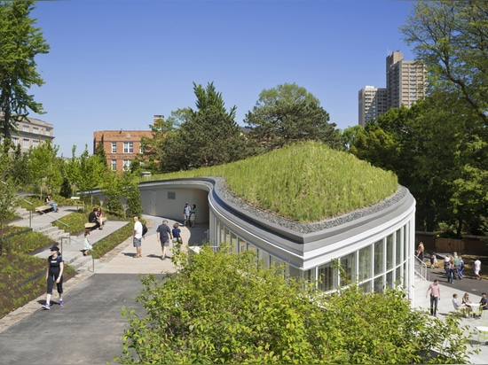 Inhabitable Topography and Green Roof